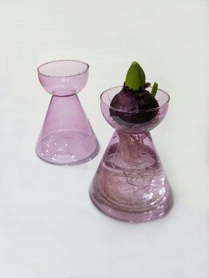Cibulová váza pro rychlení cibulovin