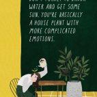 Plakát Don't forget to drink water and get some sun. You are basically a houseplant with more complicated emotions.(Nezapomínej pít vodu a dopřát si trochu slunce. Vždyť jsi vlastně pokojovka s trochu komplikovanějšími emocemi) patří do kolekce plakátů s motivy ilustrovaných rostlinných aforismů tzv. plants quotes.